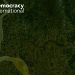 MEMBERS' WEEK: Profile – Meet Democracy International!
